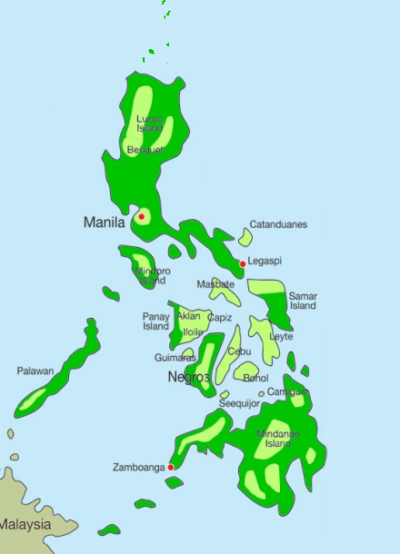 Typhoid fever is endemic all over the Philippines